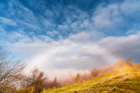 Frozen grass against the backdrop of a beautiful sky and fluffy fog