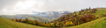 Colorful forests in the warm Carpathian mountains covered with thick gray fog
