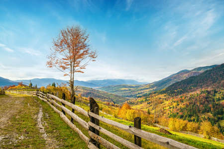 Village under the hills sheltered by autumn forests in the light of the bright sun in good weather Standard-Bild
