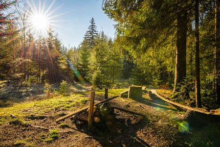 Beautiful forest clearing for hiking in the unusual hills of the Carpathians