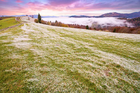 A glade in frost after a frosty night in the mountains covered with forests Imagens