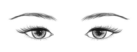 Sketchy eyes with lashes and brows isolated on white background.