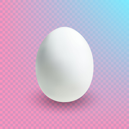 Egg with white eggshell and nice shadow isolated on colorful transparent background. Easter, new life symbol. Traditional breakfast. Vector illustration.