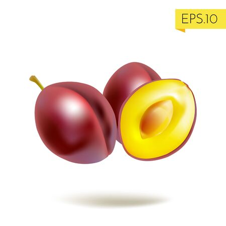 Plum whole and half made in realistic style with shadow isolated on white background. Vector illustration. 向量圖像