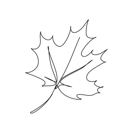 Maple leaf in an elegant continuous line art style isolated on white background. Editable stroke.