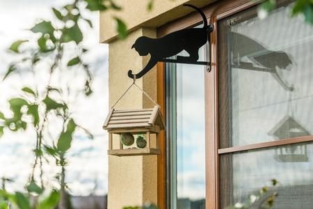 on a window frame mounted bird feeder