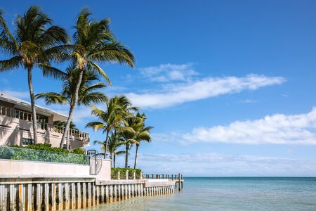 Building with palm trees by the ocean under a blue sky. Ocean view. Foto de archivo - 133316033