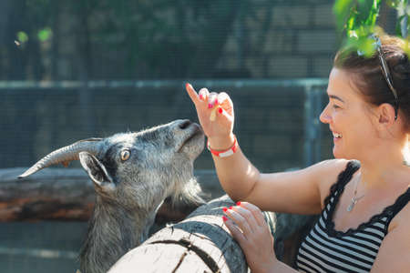 Young smiling woman feeds a grey goat