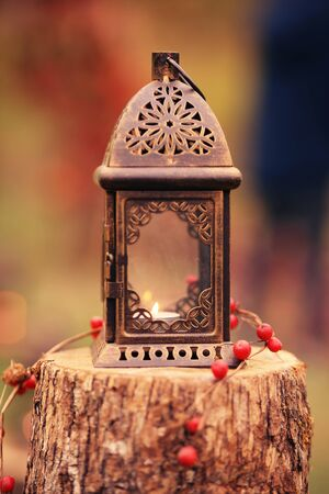 Retro lantern ( old copper) with a burning candle inside. It's placed on a tree trunk and decorated with red fruits. Ideal for exterior/garden decoration.