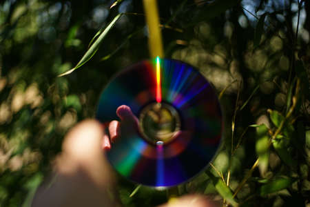 A reflecting of a reaching female hand on a CD disk. In the background, you could see green leaves and branches.
