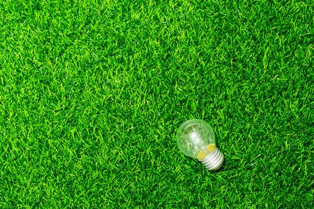 Bombilla de luz de energía sobre fondo verde hierba Foto de archivo