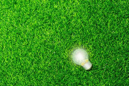 Energy light bulb on green grass background
