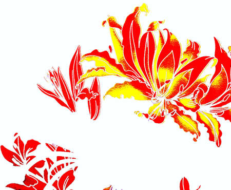 Painted yellow, red flowers on a white background photo