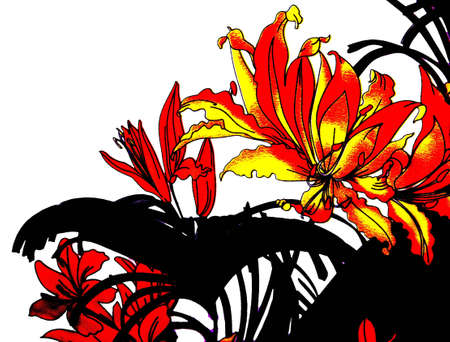 Painted yellow, red flowers and black leaves on a white background photo