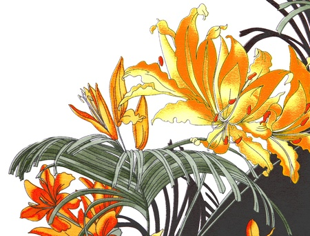 Painted yellow, red, orange flowers and leaves on a white background Stock Photo - 12554371
