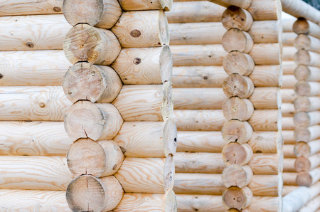 old tree: House made of solid wood in the production process