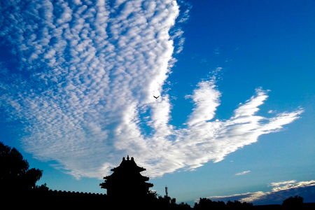 The Imperial Palace watchtower and white phoenix