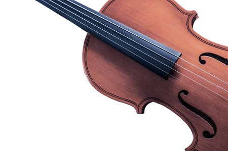 solo violinist: Part of the yellow violin on white background with space for text writing.