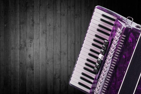 overtone: Part pink accordion on wooden grey background. Write text. Stock Photo