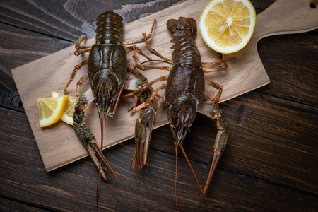 Crayfish. Fresh crayfish on a table in a rustic style, close-up. Lobster closeup 스톡 콘텐츠