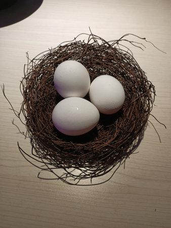 Bird's nest, egg, white, decoration, art, round, wild, ecology, environment, food, restaurant, delicious, nutrition
