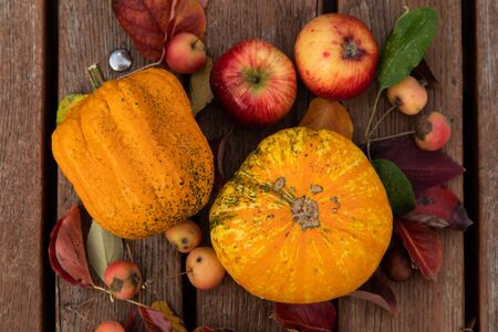 Bright orange pumpkins, red apples and chili peppers with fallen leaves on gray wooden bench