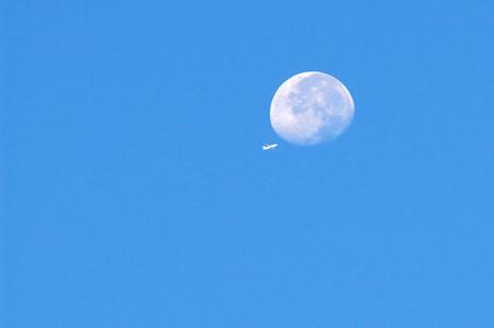 moon on sky