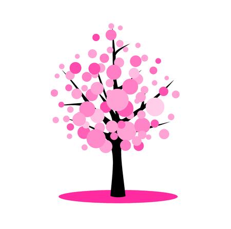 cherry wood: Blossom cherry tree