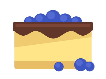 Blueberry cake with chocolate isolated on white background, vector illustration.