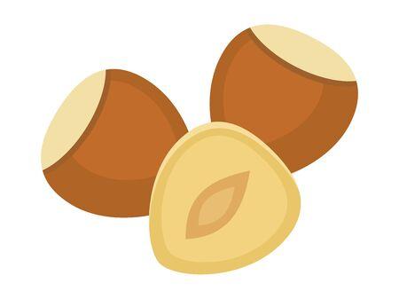 Hazelnuts isolated on white background, vector illustration.