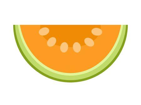 Melon slice isolated on white background, flat style vector illustration.