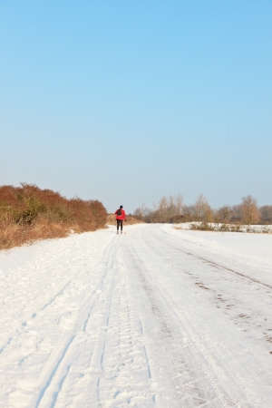 Single man hiking with skis in dutch winter landscape with blue sky. Stock Photo - 20175086