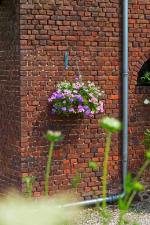 Basket with pink flowers hanging on brick wall. House and garden dcoration. photo