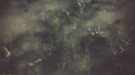 mist: Aerial of rocky landscape with palms in the mist. Stock Photo