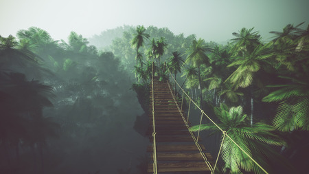 rope bridge: Rope bridge in misty jungle with palms. Backlit. Stock Photo