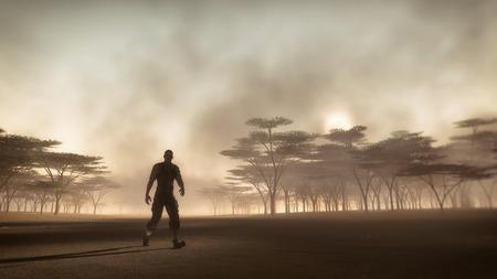 aventurero: Hombre aventurero caminar en brumoso paisaje de sabana al amanecer.