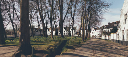 stitched: Stitched panorama of an urban park in winter with leafless deciduous trees surrounded by whitewashed houses on a sunny day
