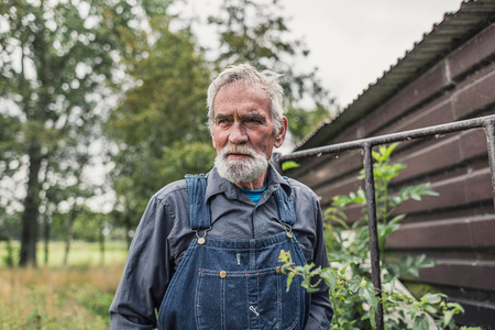 grizzled: Serious grey haired bearded senior farmer standing in the farmyard, closeup head and shoulders view