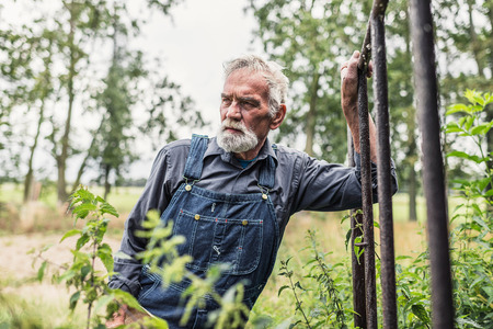oldage: Half Body Shot of a Pensive Senior Bearded Farmer Leaning Against Rail at the Farm and Looking Into the Distance