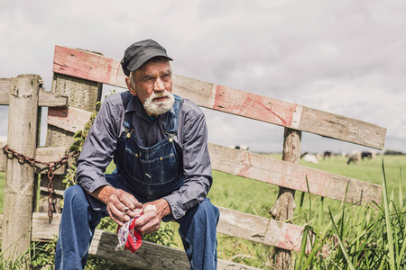fence: Elderly farm worker sitting relaxing in the sunshine on a wooden fence surrounding a pasture with livestock