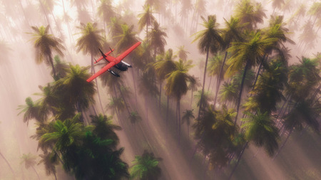 airborne vehicle: Aerial view of small red airplane flying over dense palm tree forest in the mist with sunbeams Stock Photo