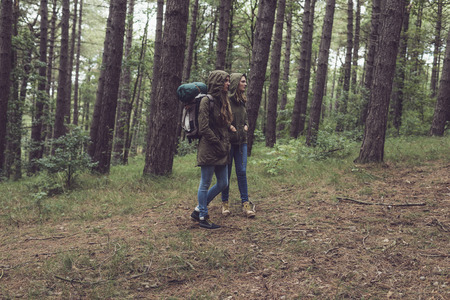 twin sister: Twin sister trekking in forest.