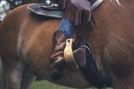 stirrup: Western boot in stirrup.