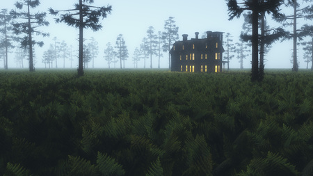 Illuminated house in misty field of ferns with fir trees.
