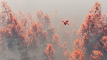 mist: Single engine airplane over autumn pines in the mist. Stock Photo