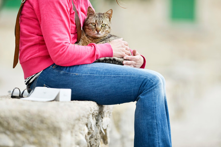 cat island: Tabby cat lying on lap of woman sitting in garden on stone wall. Majorca. Balearic island. Spain.