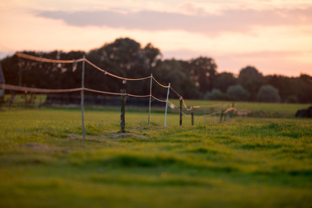 cattle wire wires: Electric fence on farm land at sunset. Stock Photo