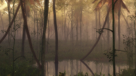 misty forest: Pond in dense misty tropical forest.