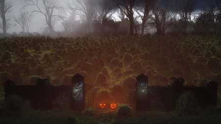 high angle view: High angle view of two halloween pumpkins at spooky gate in misty field at night.