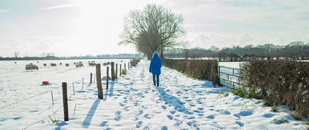 Woman walking in dutch rural winter landscape.